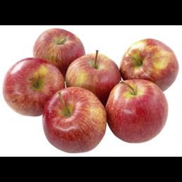 Äpfel Elster 5Stk ca.1kg