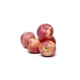 Äpfel Gala ca.1kg