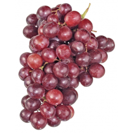 Trauben Rot Kernlos 500g